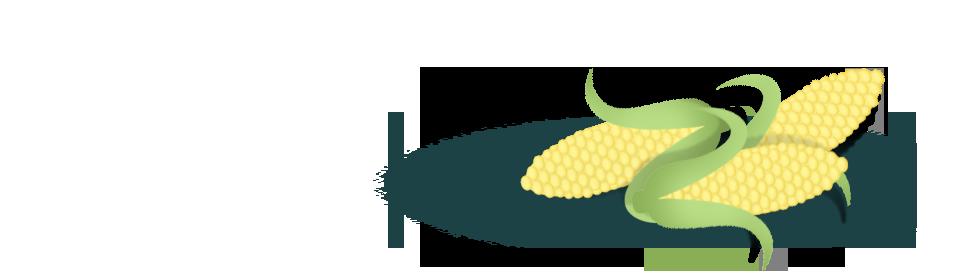 wcc_didyouknow_corn